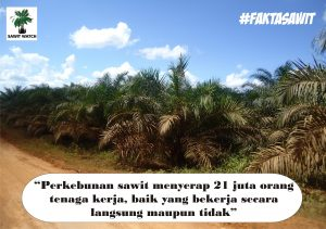 fakta 1 compress